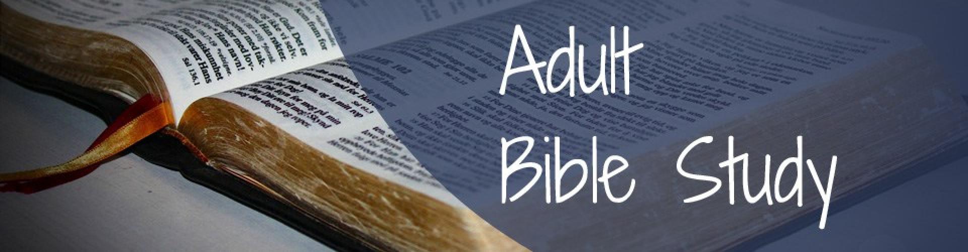 women-free-adult-bible-study-pics